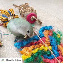 Load image into Gallery viewer, Lovebird chewing Rainbow sisal Preening Toy Parrot Funhouse