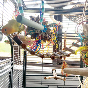 Peach faced Lovebird playing on Sisal Log Bridge 50x8cm Parrot Funhouse