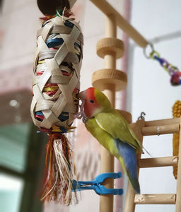Peach Faced lovebird foraging Boredom Breaker Small Foraging Cylinder Parrot Funhouse