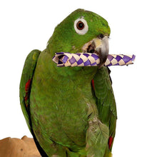 Load image into Gallery viewer, Conure playing with Super Bird Creations Woven Bamboo Sticks 13x1.5cm Parrot Funhouse
