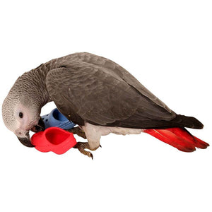 African Grey Parrot Chewing Bird-safe Birdie Crocs™ Foot Toy Parrot Funhouse