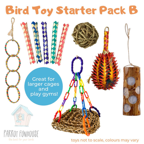 Bird Toy Starter Pack B Parrot Funhouse
