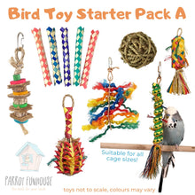 Load image into Gallery viewer, Bird Toy Starter Pack A Parrot Funhouse