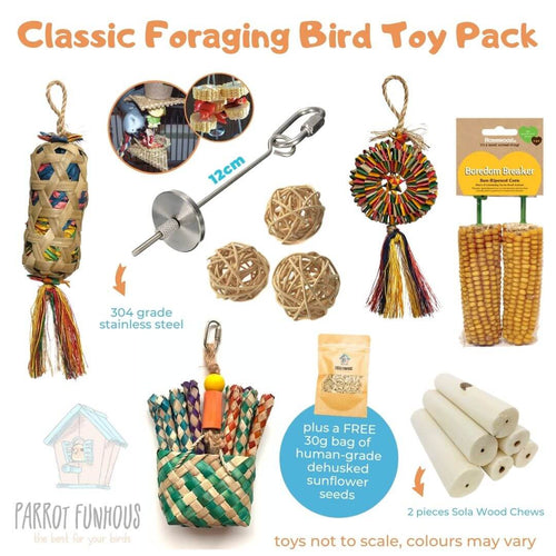 Classic Foraging Bird Toy Pack