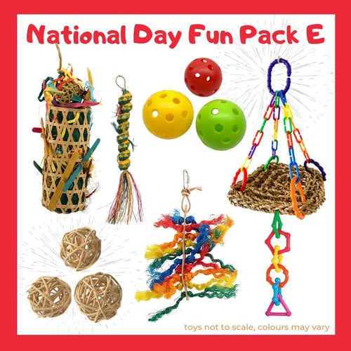 Limited Edition Bird Toy Fun Pack E