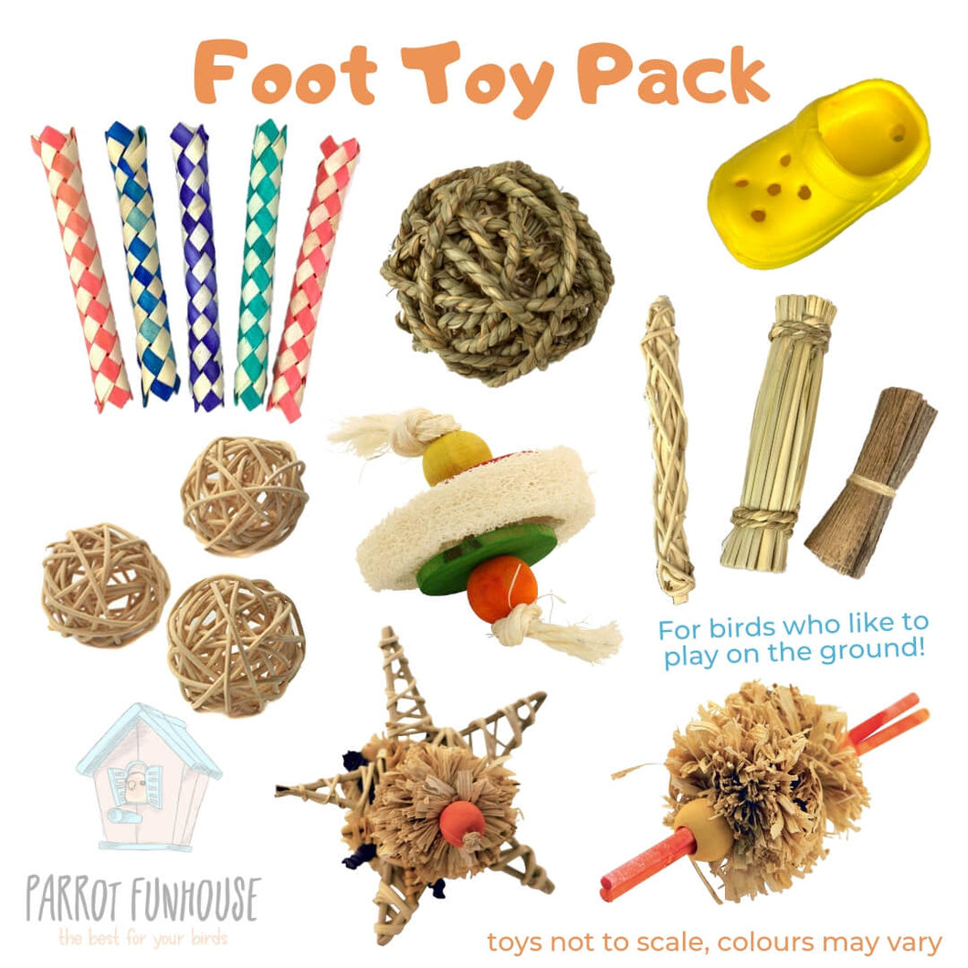 Foot Toy Pack Parrot Funhouse