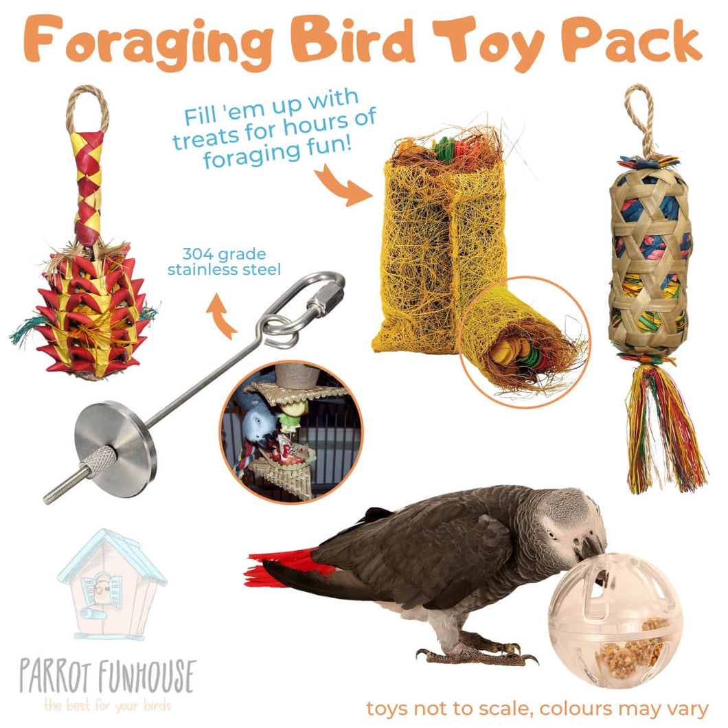Foraging Bird Toy Pack Parrot Funhouse