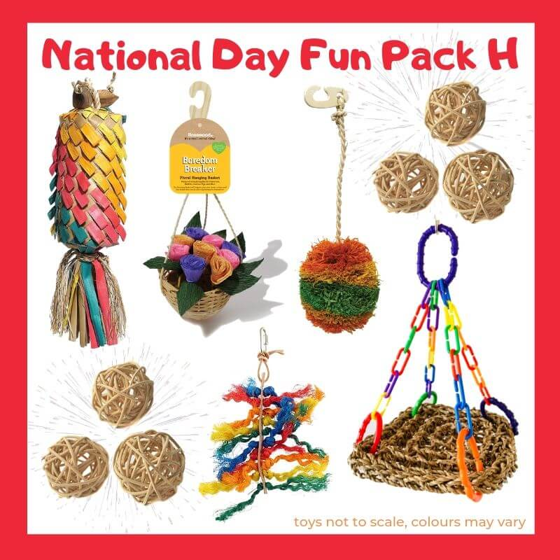 Limited Edition Bird Toy Fun Pack H