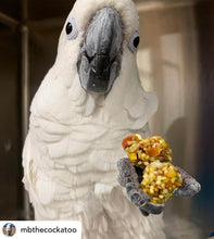 Load image into Gallery viewer, Cockatoo eating Lafeber Tropical Nutriberries Parrot Funhouse