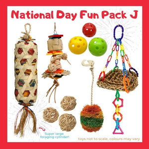 Limited Edition Bird Toy Fun Pack J