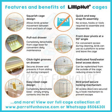 Load image into Gallery viewer, LillipHut Y60 cage for small parrots