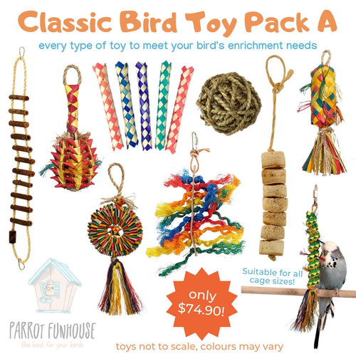 Classic Bird Toy Pack A Parrot Funhouse