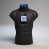 VictoryXR Victor The Torso: 4d Human Anatomy Augmented Reality Learning Package | Human Torso Model
