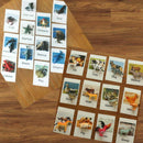 Animal Flash Cards with Matching Toys - Educational Learning Game