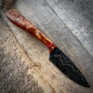 Damascus May Skinner - Thuya Burl & Curly Koa
