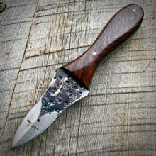 Load image into Gallery viewer, The Edisto Oyster Knife Hammered - Cocobolo Rosewood