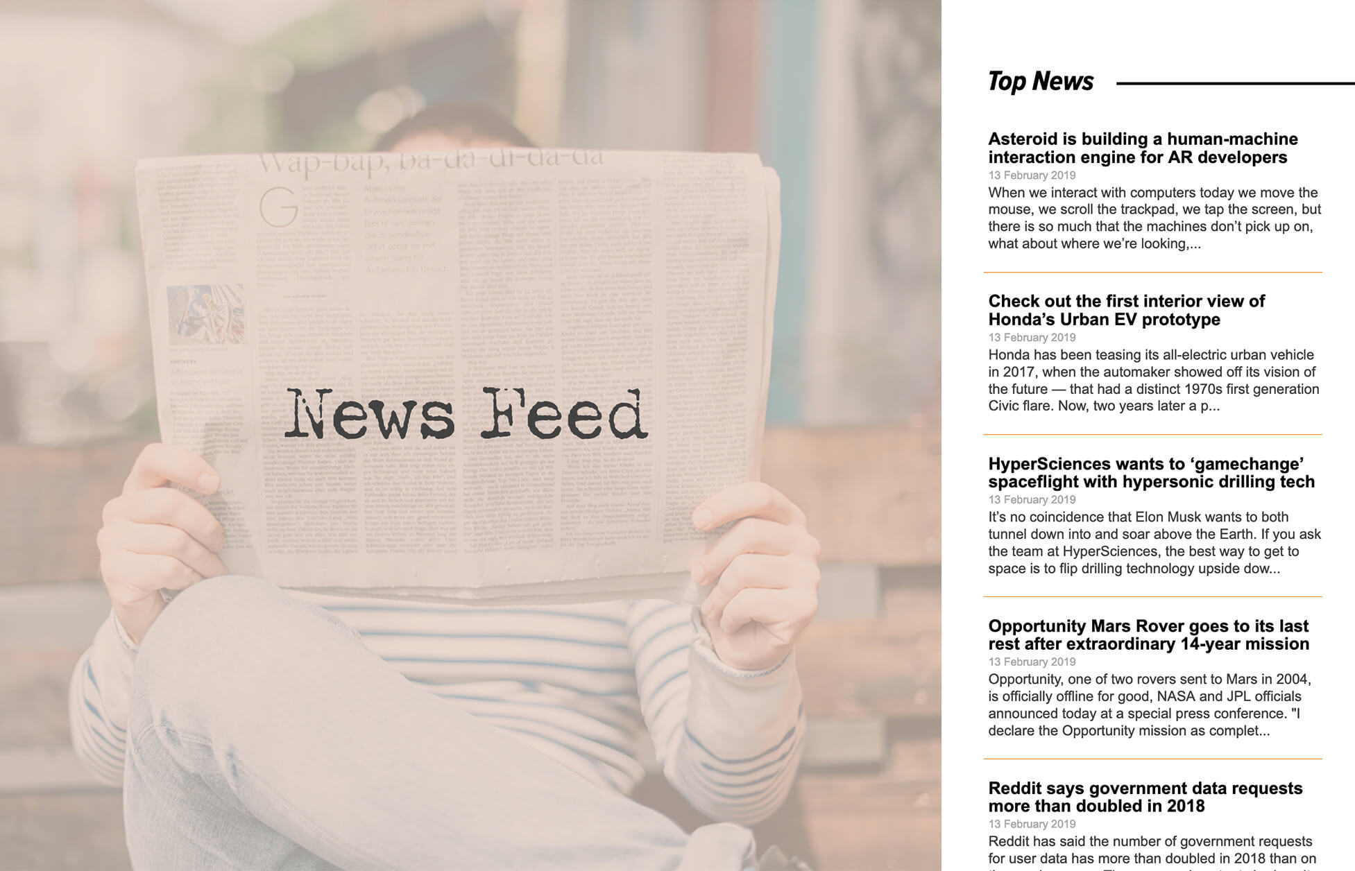 News Feed Widget for Adobe Muse by MuseThemes