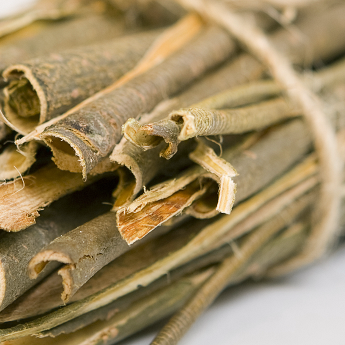 Reasons Why Salix Alba Bark Extract Is Getting More Popular In The Past Decade