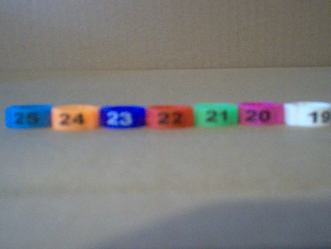 Numbered E-Z Clip Bands (1-25)
