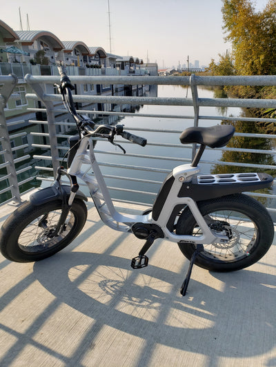 I never knew I needed an Electric Bike