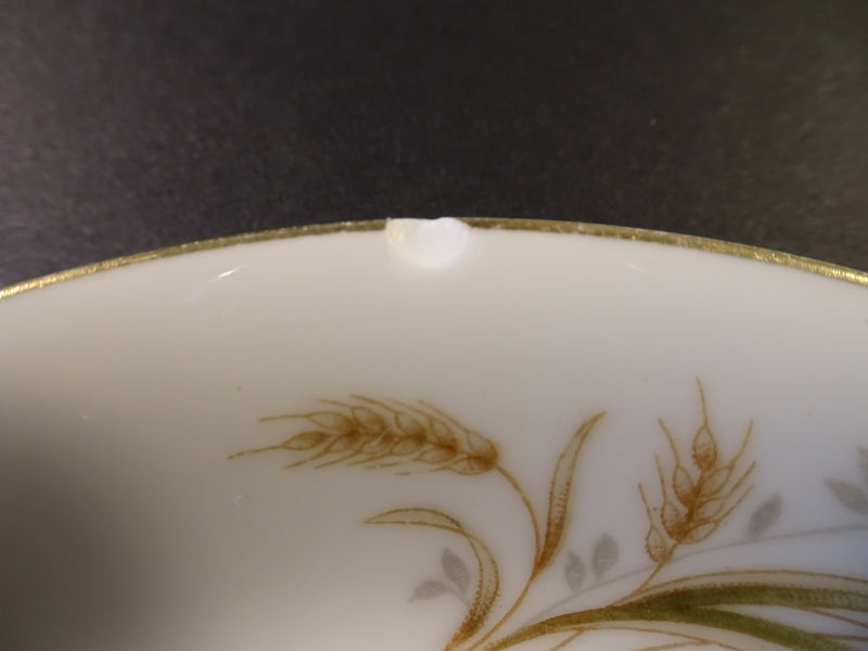 Crestwood China Eternal Wheat 5.55in Saucer