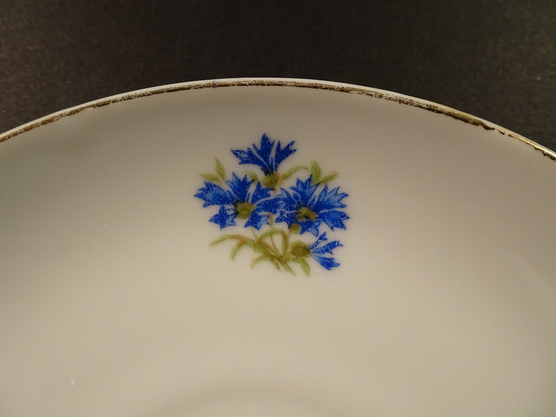 Blue Floral Pattern with Silver Trim on White 5.25in Saucer