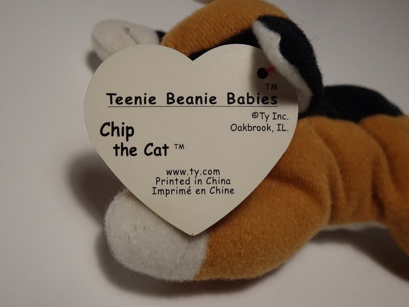 Chip the Cat Beanie Babie By Ty Inc.