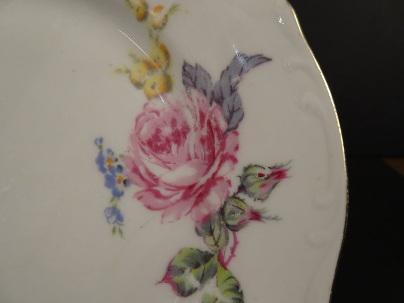 Fine Bohemian China  6.8in Rimmed Salad Plate