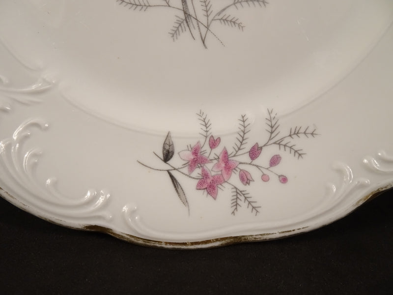 Walbrzych Spring Glen 7.4in Coupe Salad Plate