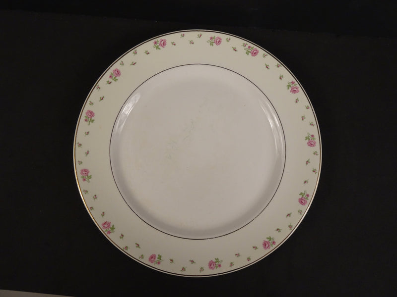 Illinois China Co  9in Rimmed Luncheon Plate