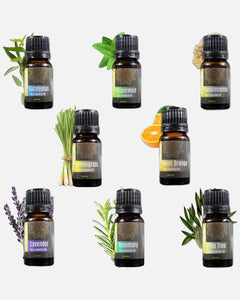 mottomo essential oil sets lavender peppermint tea tree eucalyptus rosemary