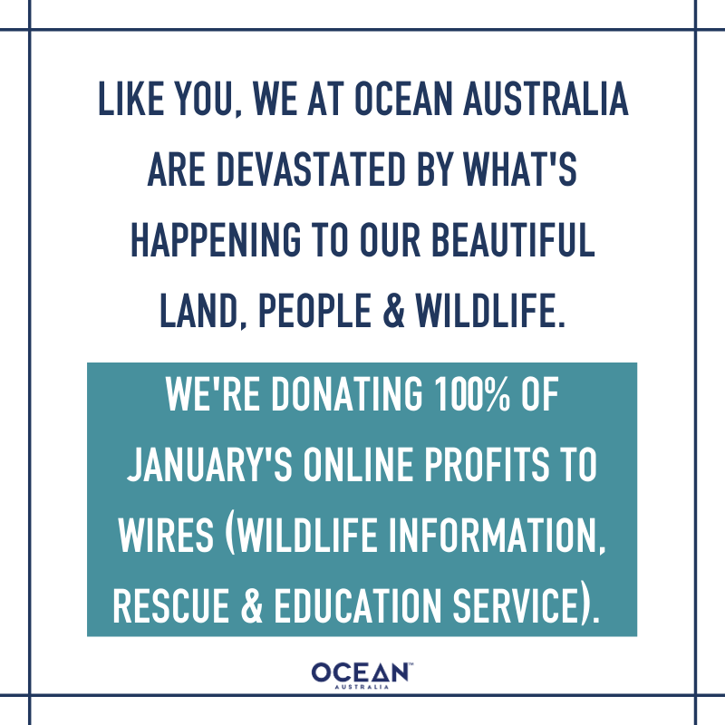 We're donating all profits from January's online sales to WIRES