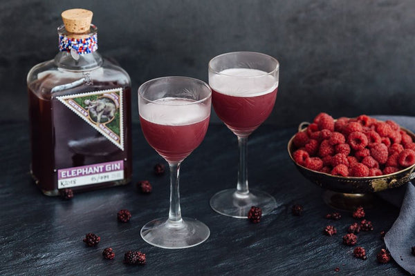 Elephant Sloe Gin - The Distillery London