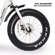 ACE-S Fat Tyre Electric Bike