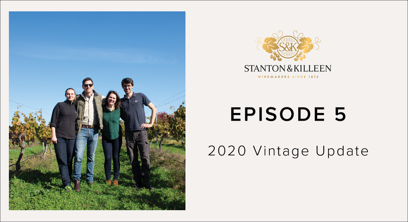 Episode 5 - 2020 Vintage (Winemaking)