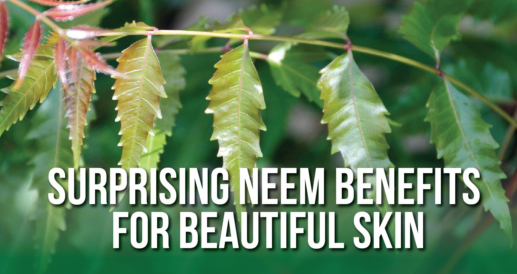 Surprising Neem Skin Benefits | iHeart Nature