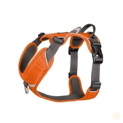 Geschirr Comfort Walk Pro - orange-Dog Copenhagen-athleticdog