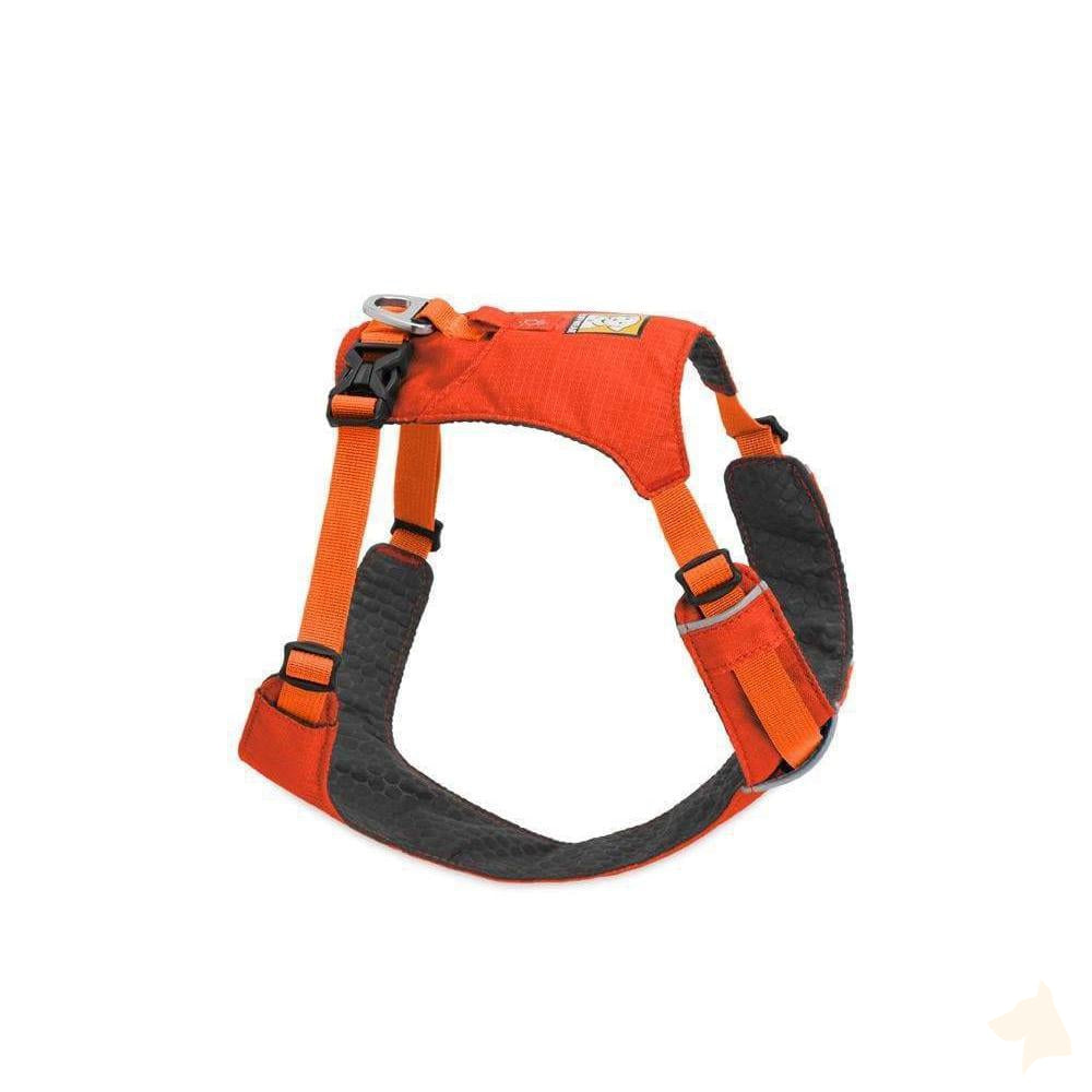 leichtes Geschirr Hi & Light™ - orange-Ruffwear-athleticdog