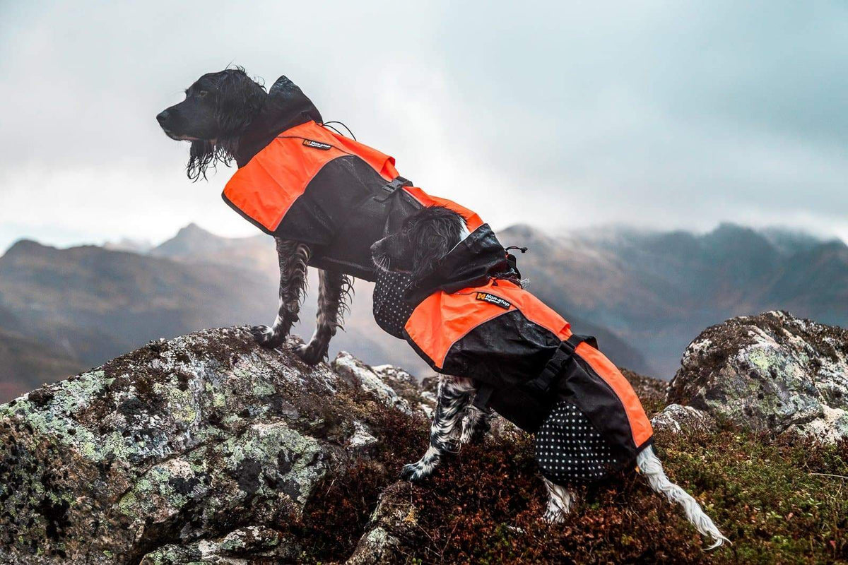 Mantel Non-Stop Beta Pro Raincoat - orange-Non-Stop Dogwear-athleticdog