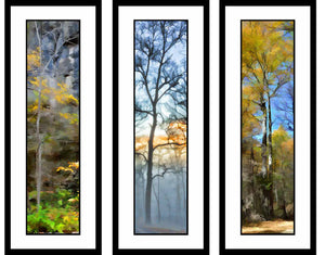 Blues and Yellows grouping by Alison Thomas of Serenity Scenes Photography and Digital Art.