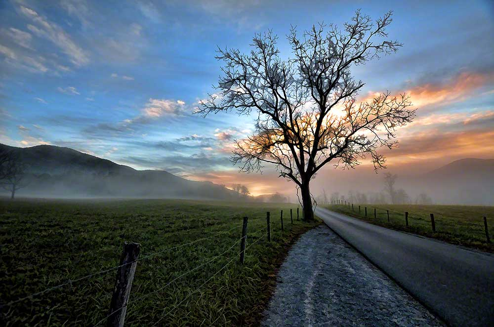 The sun rises over fields surrounded by mountains.  A Lone tree stands witness to the settlers long gone from these fields.  The memories remain. Cades Cove Sunrise by Alison Thomas of Serenity Scenes Photography and Digital Art.