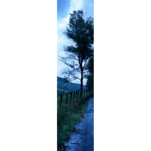 A small tree next to a country road silhouetted against the light morning sky.  The tree, the grass, the road, and beyond them, the rolling mountains, are still dark with green and blue shadows.   Early Morning Rain by Alison Thomas of Serenity Scenes Photography and Digital Art.
