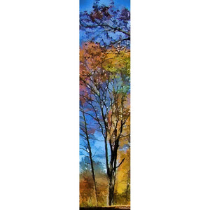 Fall Forest by Alison Thomas of Serenity Scenes Photography and Digital Art.