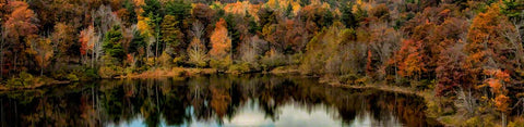 A clear mountain lake reflects the autumn trees gathered around it, a tall, crowded forest full of muted browns, yellows, and oranges, and a few bright evergreens.  Fall Lake Reflection by Alison Thomas of Serenity Scenes Photography and Digital Art.