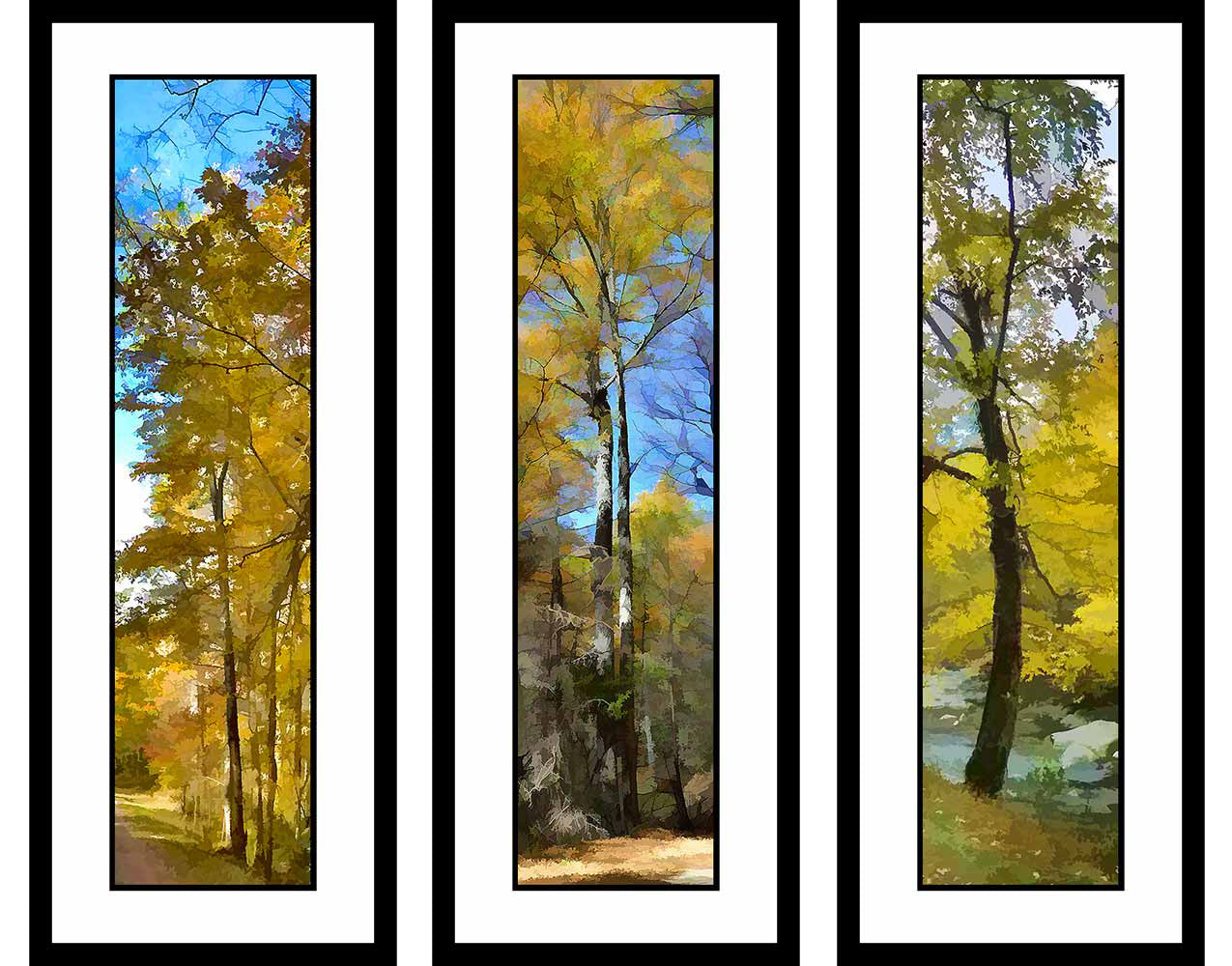 Fall Yellows grouping by Alison Thomas of Serenity Scenes Photography and Digital Art