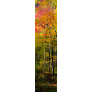 Light shines through brilliant red and orange autumn leaves, blending them together like watercolors and turning them into a flickering fire atop tall, slender trees. Fire Canopy by Alison Thomas of Serenity Scenes Photography and Digital Art.