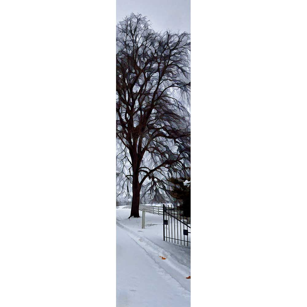 Fresh snow blankets a country road. A bare tree, the geometric shapes of stained glass amongst its thin branches, stands beside an open gate leading to an estate. The white fence connected to the gate extends into the distance. Two brown leaves in a tire track are the only color in the scene.  Fresh Snow by Alison Thomas of Serenity Scenes Photography and Digital Art.