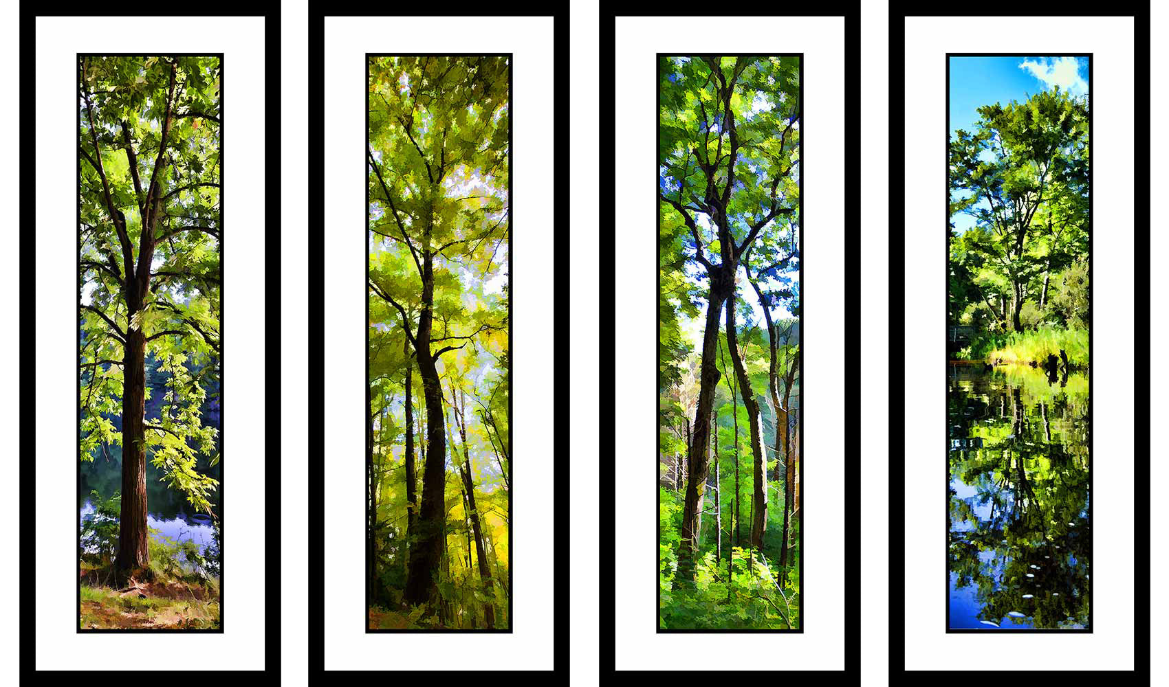 Greens grouping by Alison Thomas of Serenity Scenes Photography and Digital Art.