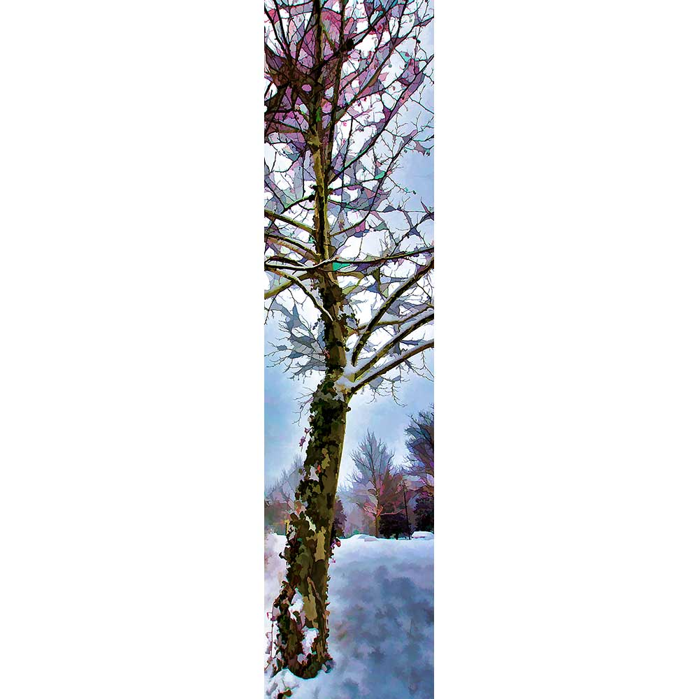Green ivy and red berries are contrasted against the winter snow.  Ivy Tree by Alison Thomas of Serenity Scenes Photography and Digital ARt.