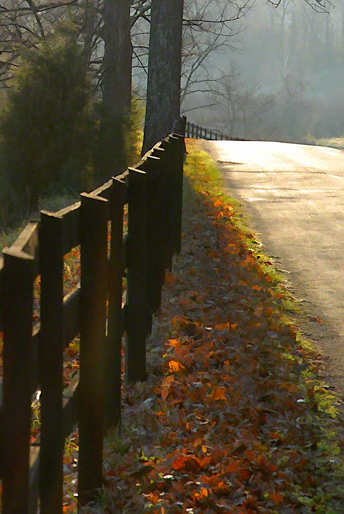 A country road goes up a hill and curves into the fog bordered by a wooden fence and fallen leaves.  Just Around the Bend by Alison Thomas of Serenity Scenes Photography and Digital Art.